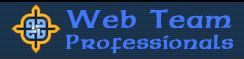 Web Team Professionals